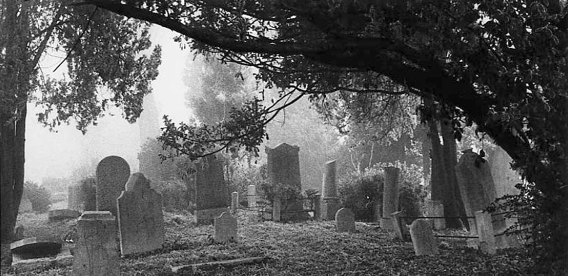 Venice. Israelitic graveyard, 1963
