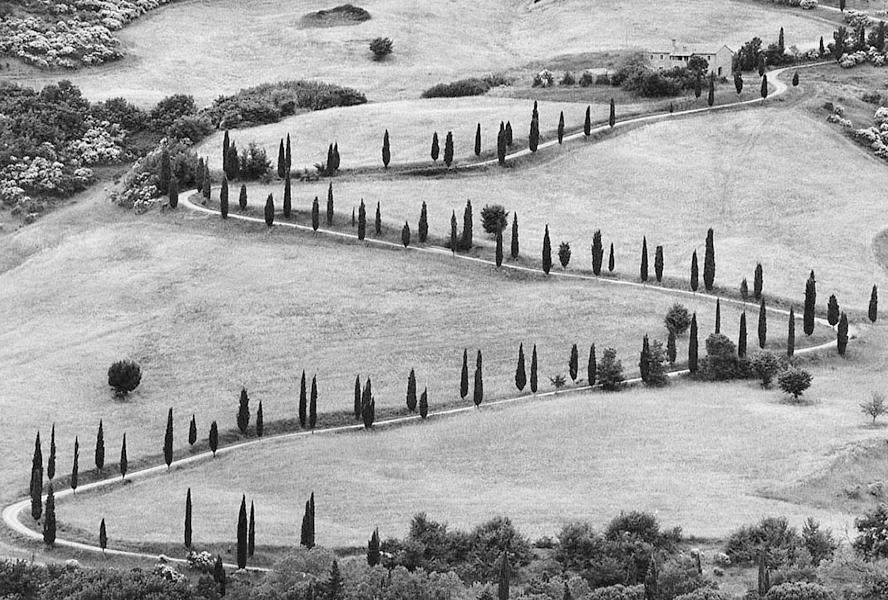 Tuscany, 1978