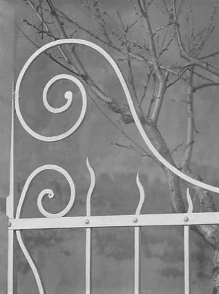 White gate, 1950