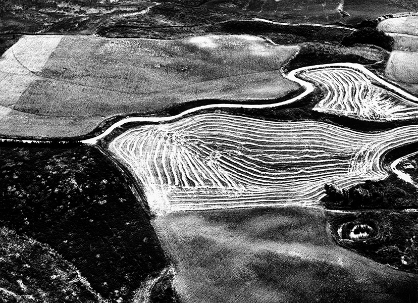 Becoming conscious of nature, 1968 c.