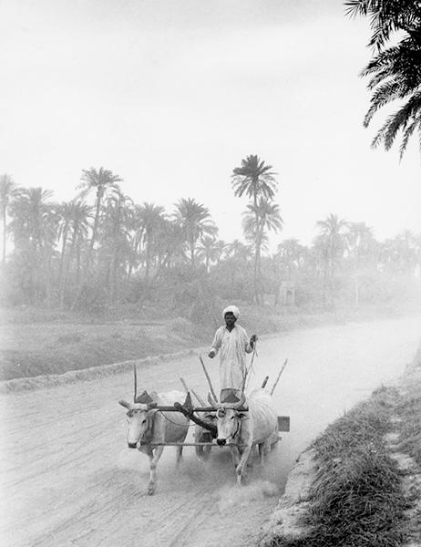 Iran, 1959