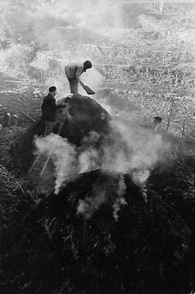 Passopisciaro. Coal pickers, 1963